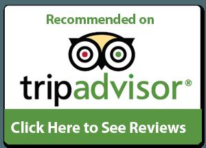 Tripadvisor logo - Primus Trans on Tripadvisor